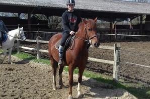 Un passage au Centre Equestre d'Aubarède pour un entrainement UNSS !