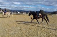 6 février sous le soleil : Rencontre amicale de Pony Games à Nay !