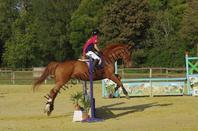 "Mon ""ancienne"" vie : Amiens équitation ♥."