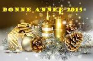 bonne et heureuse année 2015!
