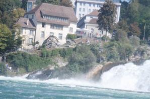 Voyage dans les Vosges et au Chute du Rhin en Suisse