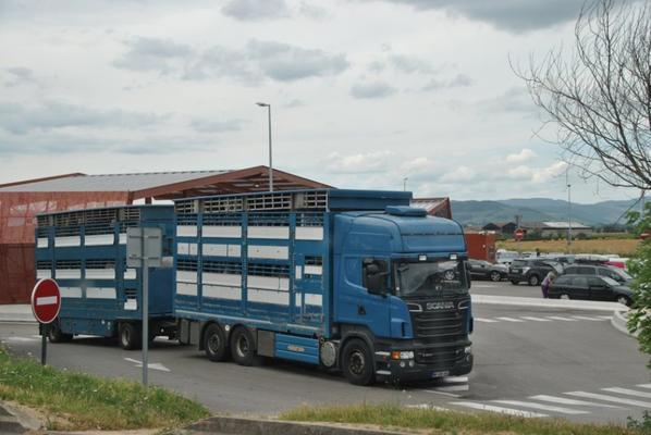Les bétaillères.