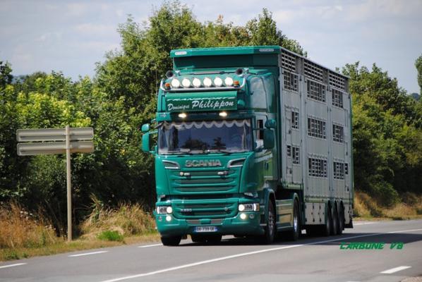 Transport Dominique Philippon. RN7 dans la région de la Pacaudière. Août 2016.