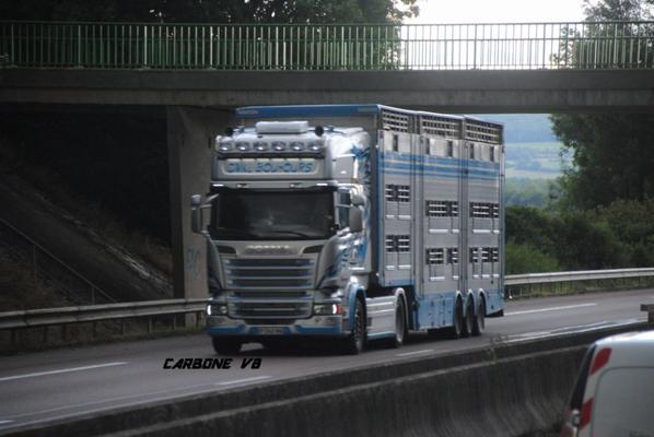 Les bétaillères sur les routes Françaises.