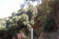 2008 BEJAIA