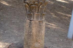 2011 TIPAZA