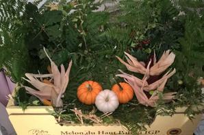 petit tour de jardin et préparation du concours de légumes  pour la journée à la campagne   dans l'indre et loire