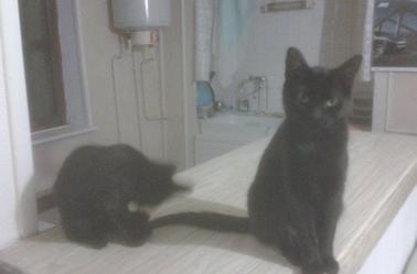 Mes deux filles Pounette et Désirée