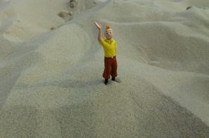 été 2016 .. sur la dune du pyla .