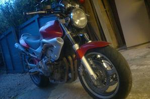 Mon Honda hornet <3