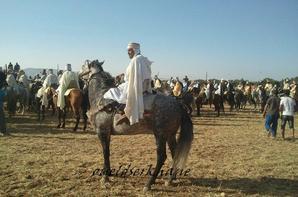 La fête de  Sidi Brahim : Ouaada 2013.