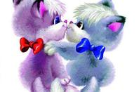 Nos amis ! les chats ! 5