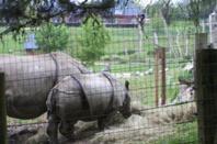 Journée au Zoo de Cerza à Lisieux 14