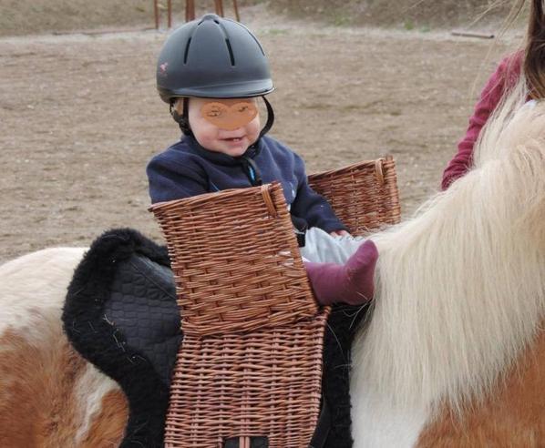 Basket Baby-pony - Tours en poneys pour jeunes enfants à partir de 10 à 12 mois.