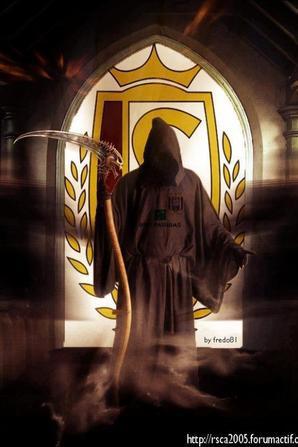 "Anti Standard "" RSCA PRIDE of BELGIUM"""
