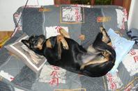 Ma kanji