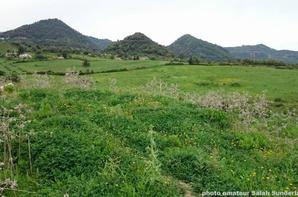 le montagne d'elouana -Jijel-
