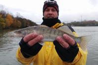 Pêche du 16/11/14 avec cousin et JF pour une bonne partir de pêche bravo à nous trois