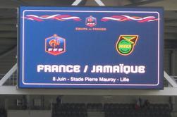 france jamaique stade pierre mauroy le 8 juin 2014