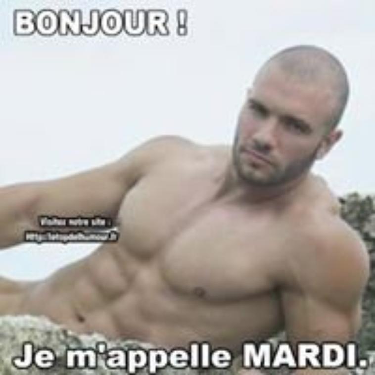 @@ bonjour mesdames  @@