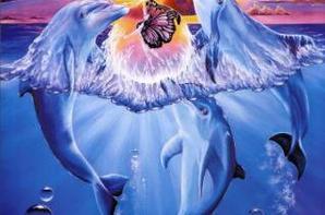 met dauphin
