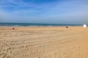 Un dimanche à la mer.
