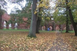 Kloster Eldena in Greifswald