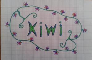 Mes talents en dessin !