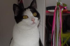 Marilou, son regard est envoûtant!