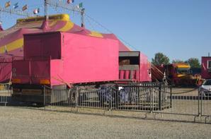 reportage cirque Medrano a Niort 4