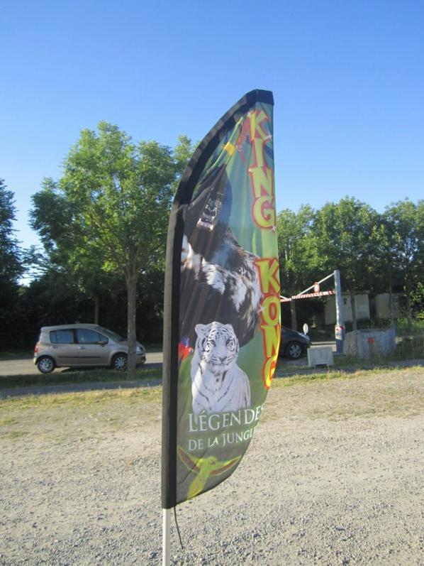 reportage cirque Medrano a Niort 5