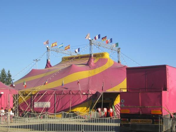 reportage cirque Medrano a Niort 7