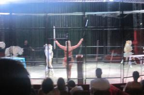 reportage cirque Medrano a Niort 13