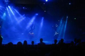 reportage cirque Medrano a Niort 16