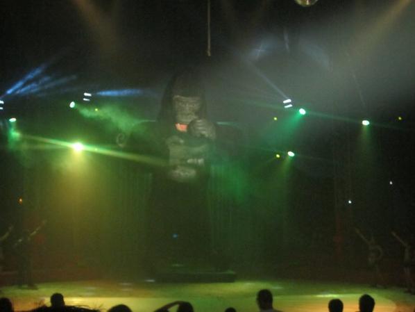 reportage cirque Medrano a Niort 20