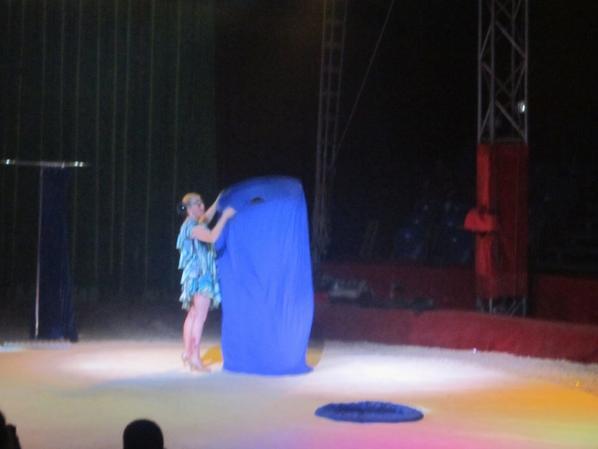 reportage cirque Medrano a Niort 23