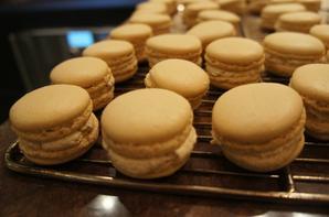 Cours sur le Macaron avec Pascal Giry