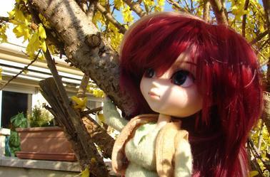 Séance photo d'Abby avec lunbleue