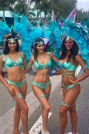 Iris  aux Îles Caïmans