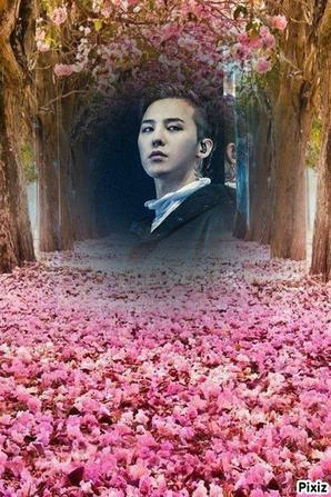 Big Bang flower Road