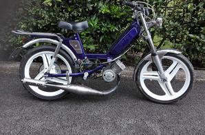 103 sp violet