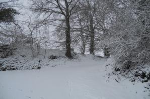 Tombe la neige !!!