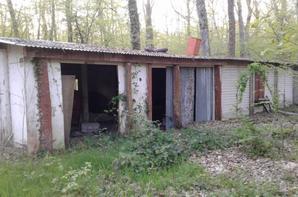 Sortie pour essayé de trouver un logement  !!
