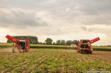 Aardappelen rooien 2014 met 2 Dewulfs RA 3060