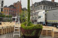 Préparation du labyrinthe de tournesols à Mons