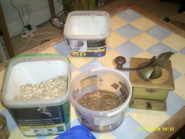 preparation de alimentation soignée