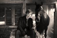 War Horse - Photoshoot avec les chevaux !