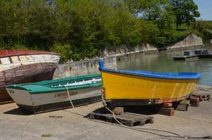 Un peu de ma decouverte de l'île d'Oléron ..un vrai régale pour les yeux ces couleurs