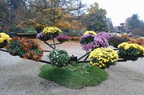 jardin des plantes suite