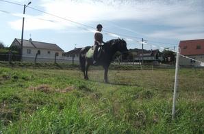 18 juillet 2012